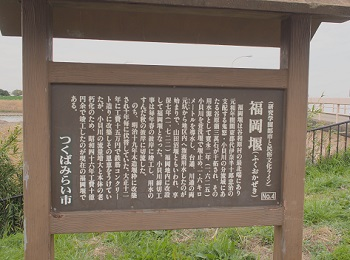 お花見20160409-3