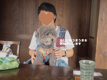 ジジさん6歳お誕生日旅行20160928-5