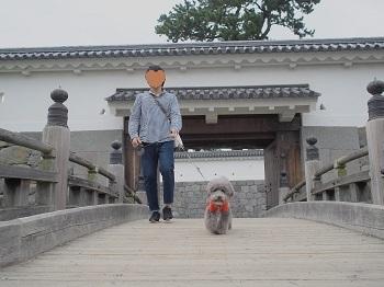 小田原城20160929-8