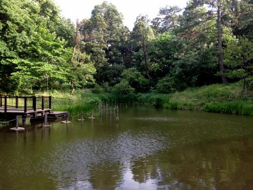 藤が丘公園 1