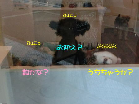 c0254.jpg