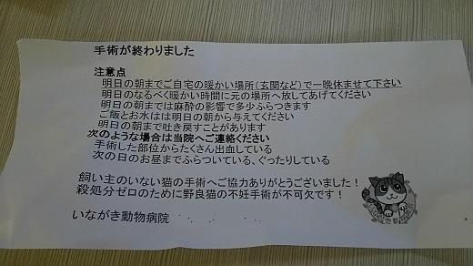 DSC_00615.jpg