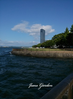 琵琶湖160623