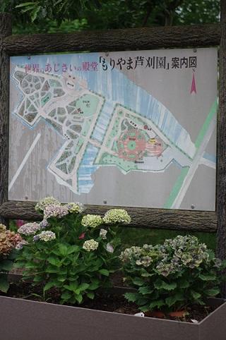 紫陽花園630