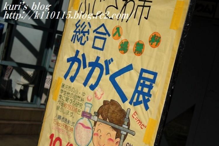 2016かがく展 (2)