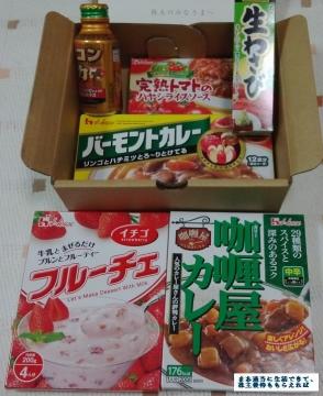 ハウス食品 株主優待02 201603