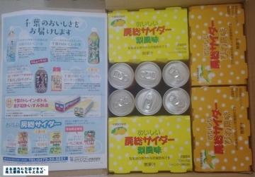 ジャパンフーズ 優待サイダー 201603
