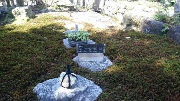ゼットン 優待 徳川園09