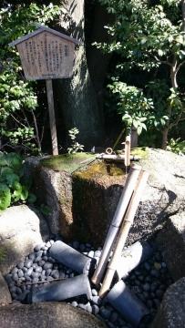 ゼットン 優待 徳川園12