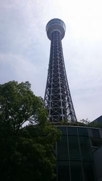 ゼットン 優待 横浜マリンタワー01