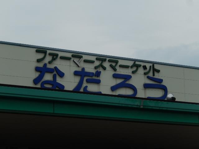 DSCN7197 (640x480)