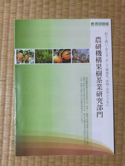 DSCF1100 (480x640)