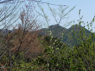 伊豆が岳方面