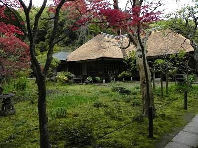 鎌倉浄智寺境内
