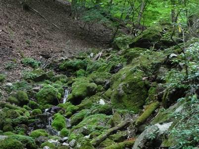 ウノタワ入口の滝