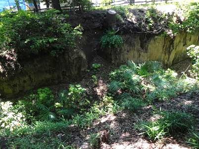 玉川壁面崩壊