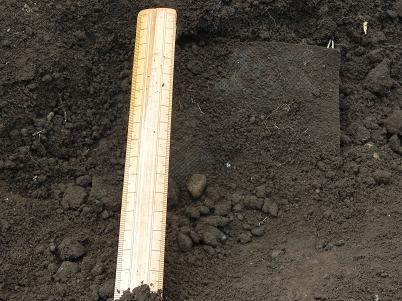 山防草シートを掘り起こす2