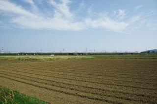 平塚市・豊田付近の一風景