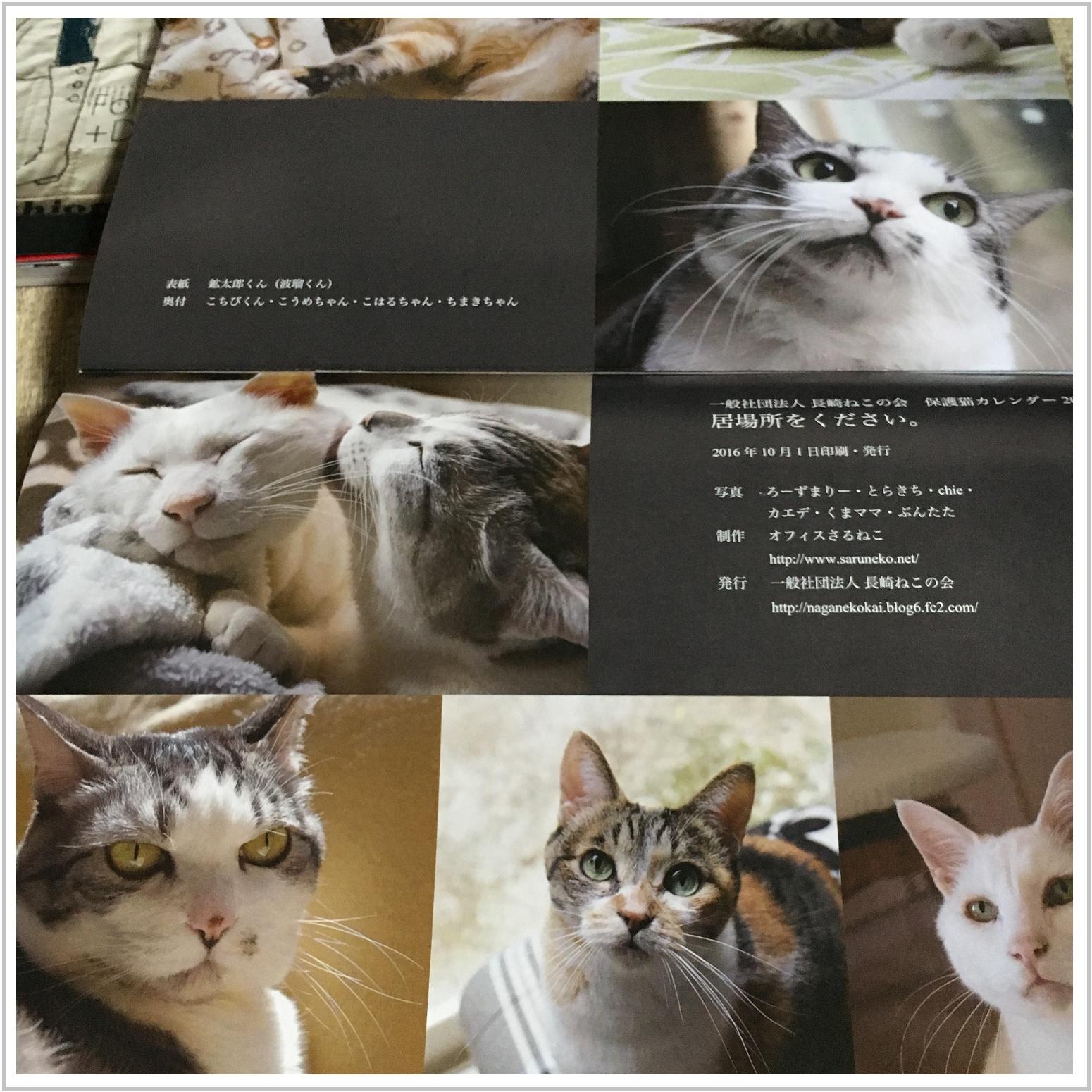 oshare_2_1030.jpg