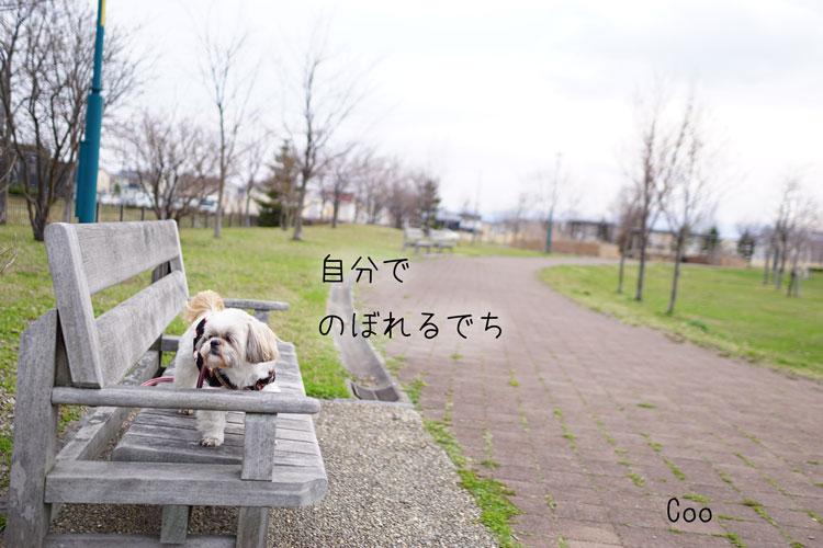 04-20_7773.jpg