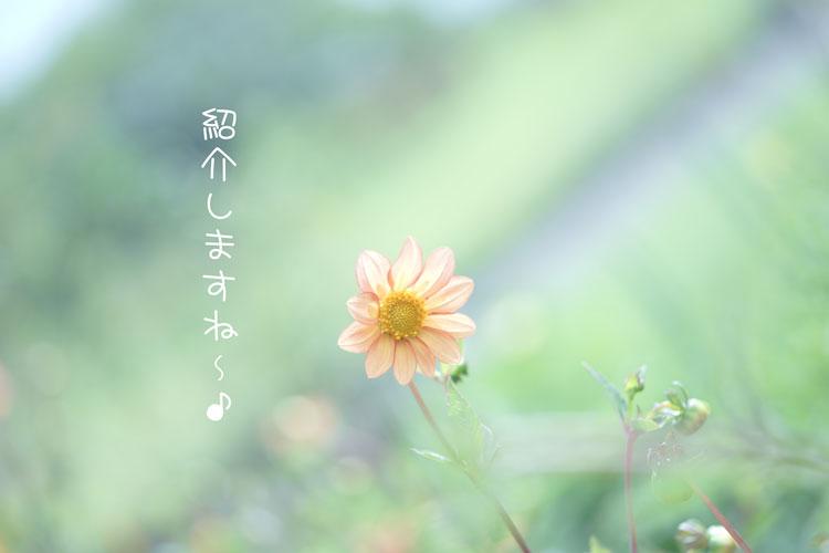 09-14_0456.jpg