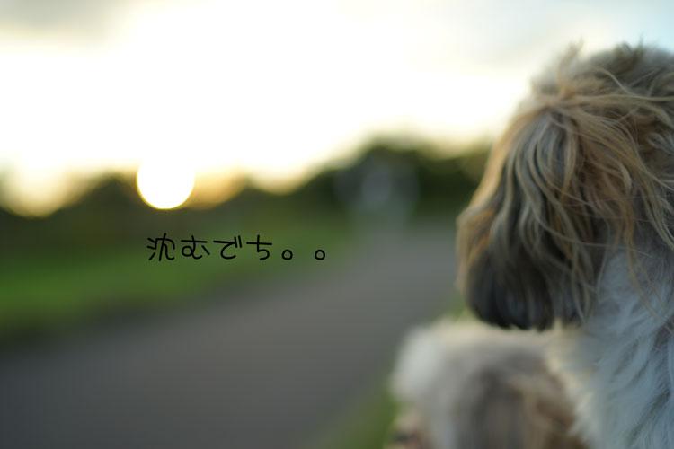 09-30_0868.jpg