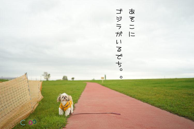 10-08_0898.jpg