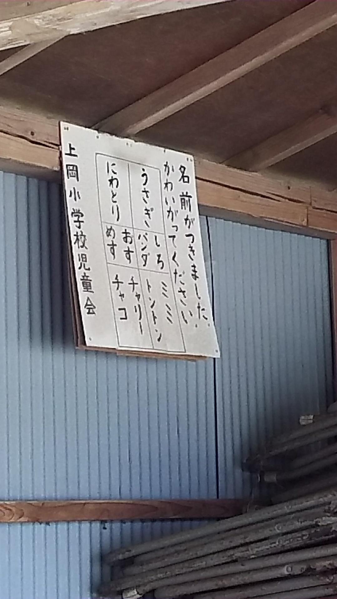 DSC_0723daigouwaokaooarai (48)