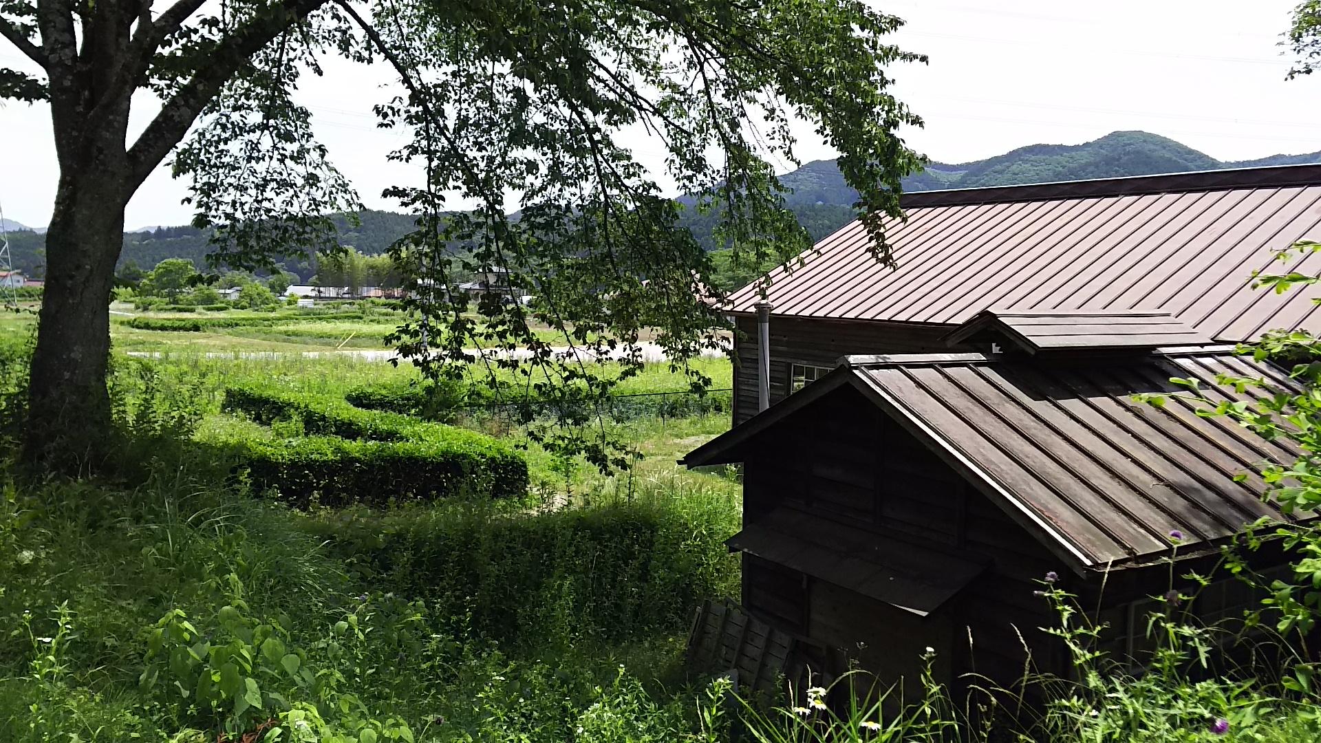 DSC_0723daigouwaokaooarai (17)