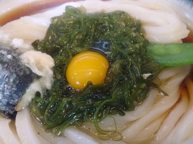 めかぶ(1)