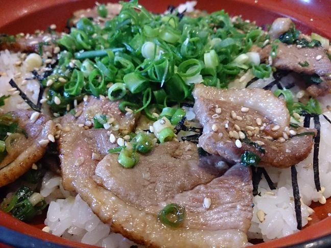 鴨ねぎ丼2(1)