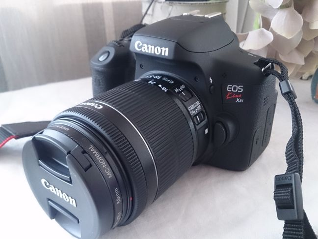 カメラ (1)