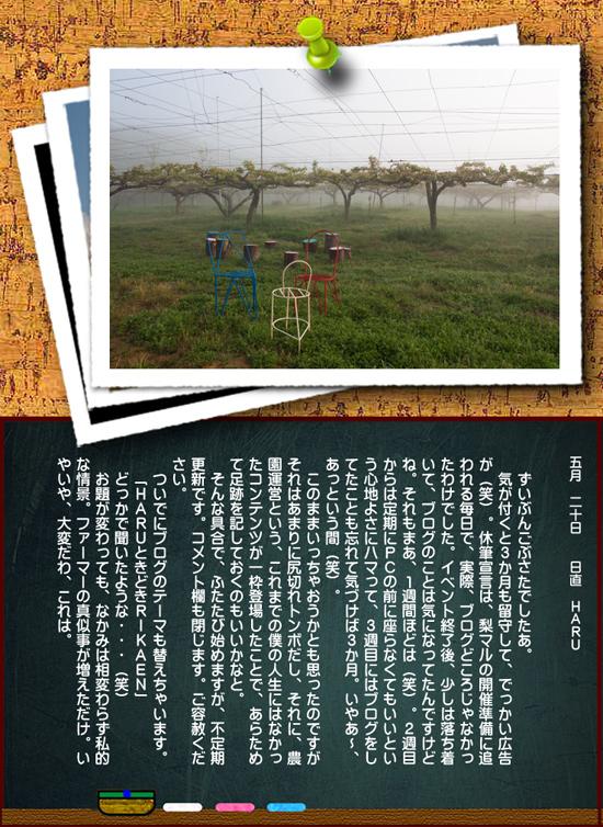 newblog3.jpg