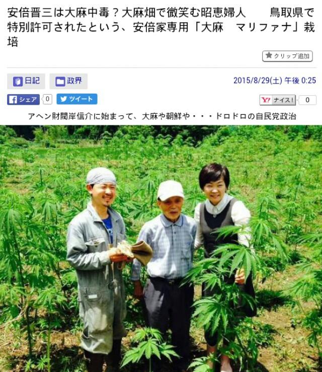 安倍晋三は大麻中毒?安倍家専用「大麻・マリファナ」栽培!大麻畑で微笑む昭恵婦人…鳥取県で特別許可され