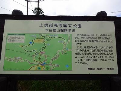 草津 (60)