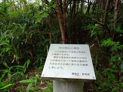 草津 (64)