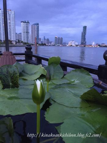 160524 Bangkok 10