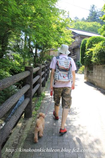 160712 Takaosan 1