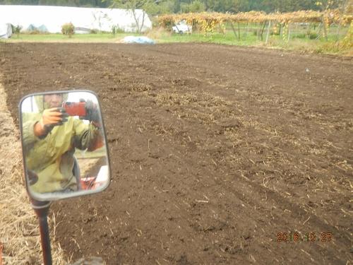 耕起作業 (1)