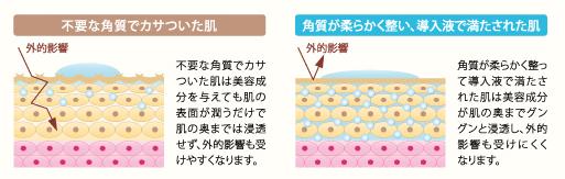 ヘヴンシャワー 肌の図