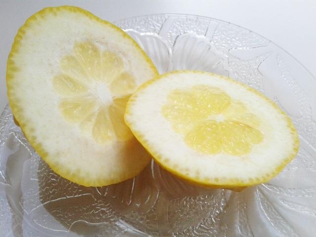 レモンの端