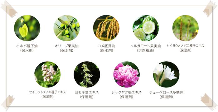 VITAKTバランシングジェル 植物由来成分