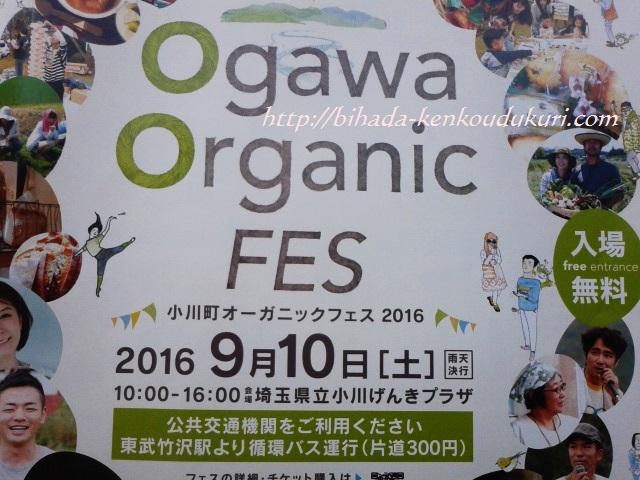 オーガニックフェス2016 4