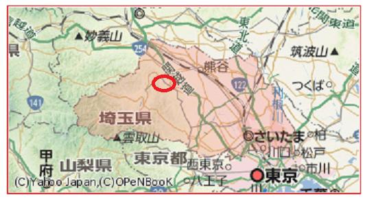 埼玉県 地図