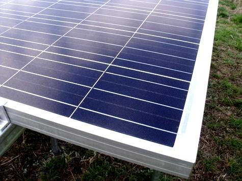 201603019 クンシランと太陽光発電 029-2