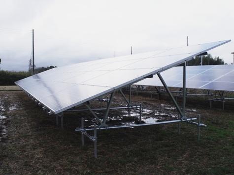 201603019 クンシランと太陽光発電 027-2