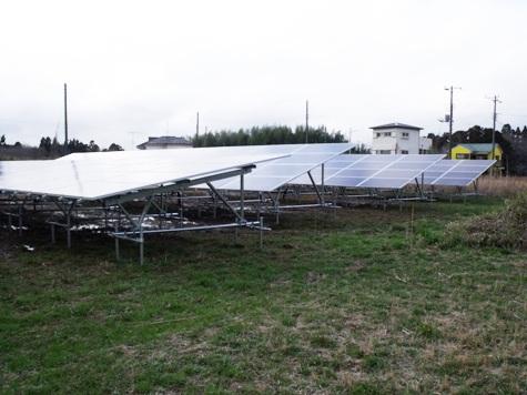 201603019 クンシランと太陽光発電 028-2