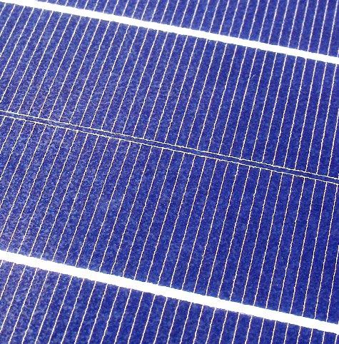 201603019 クンシランと太陽光発電 030-3