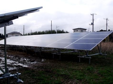 201603019 クンシランと太陽光発電 036-2
