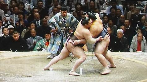 201605020 大相撲夏場所 049-2